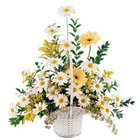 Comforting bouquet of white and yellow Flowers