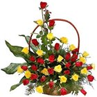 Silky Red N Yellow Coloured Roses Collection in Basket