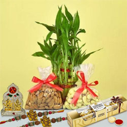Amazing Rakhi Celebration Gift Hamper
