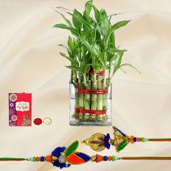 Lucky Bamboo Plant with Bhaiya Bhabhi Rakhi Set