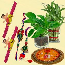 Twin Indoor Plants for Good Wishes with Family Set Rakhi