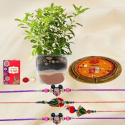 Holy Tulsi Plant with Family Set Rakhi n Pooja Thali
