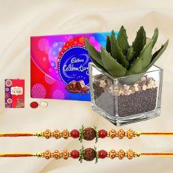 Eco Friendly Rakhi Gift