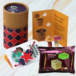 Eco Friendly Solo Box of Plantable Rakhi with Haldirams Soan Papdi